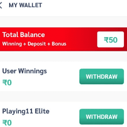 Playing 11 wallet