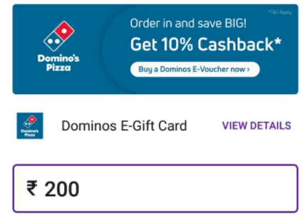 dominos payment