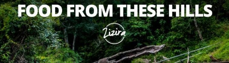 Zizira Refer & Earn – Get Free sample of Delicious Honey Straws